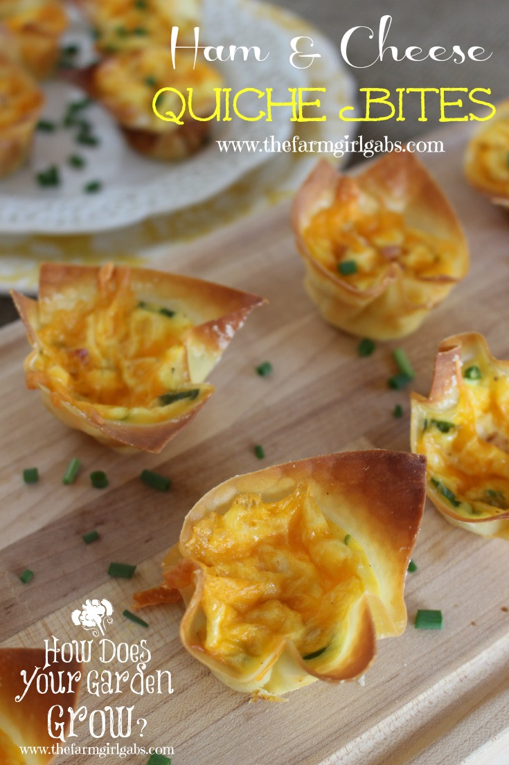 Ham & Cheese Quiche Bites is a quick and easy appetizer recipe. It's perfect for the holidays, game day, or any get-together. www.thefarmgirlgabs.com