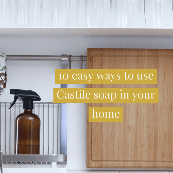 10 easy ways to use Castile soap in your home.