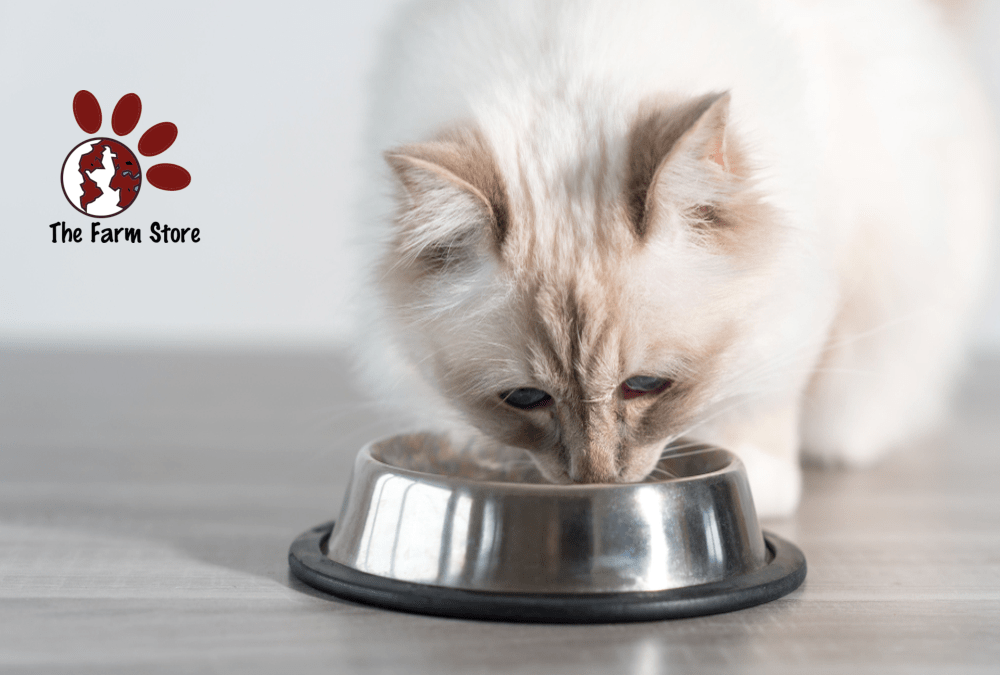 The 5 Best Raw Cat Foods in 2020 Reviews