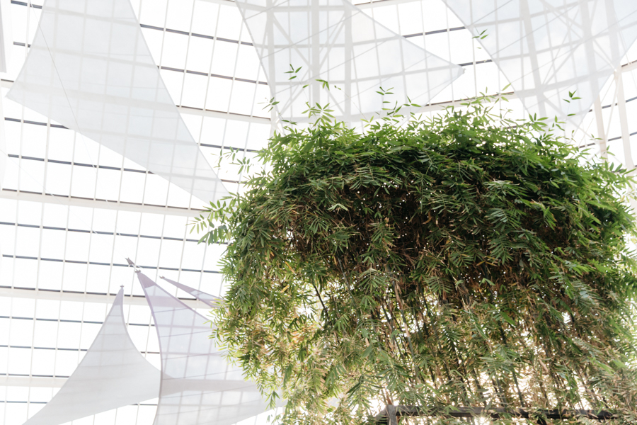 Crown Metropol Perth interior. Indoor bamboo plants.
