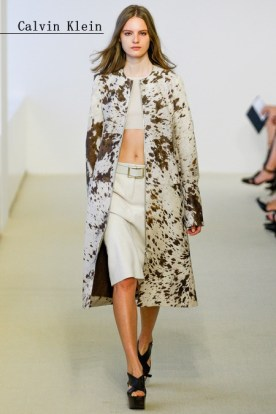 Calvin Klein Collection 3
