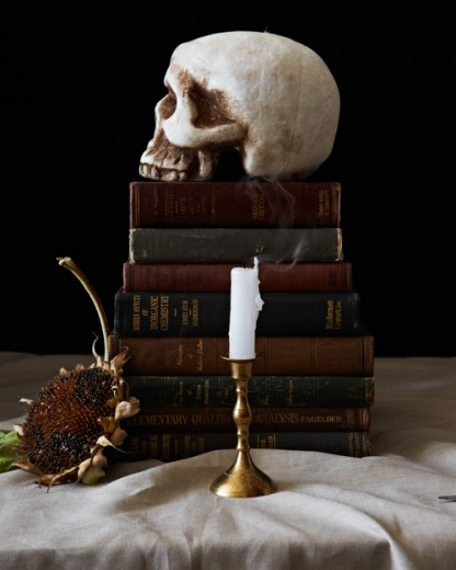 Picture Perfect Halloween / Hauntingly Beautiful Halloween Decoration Ideas