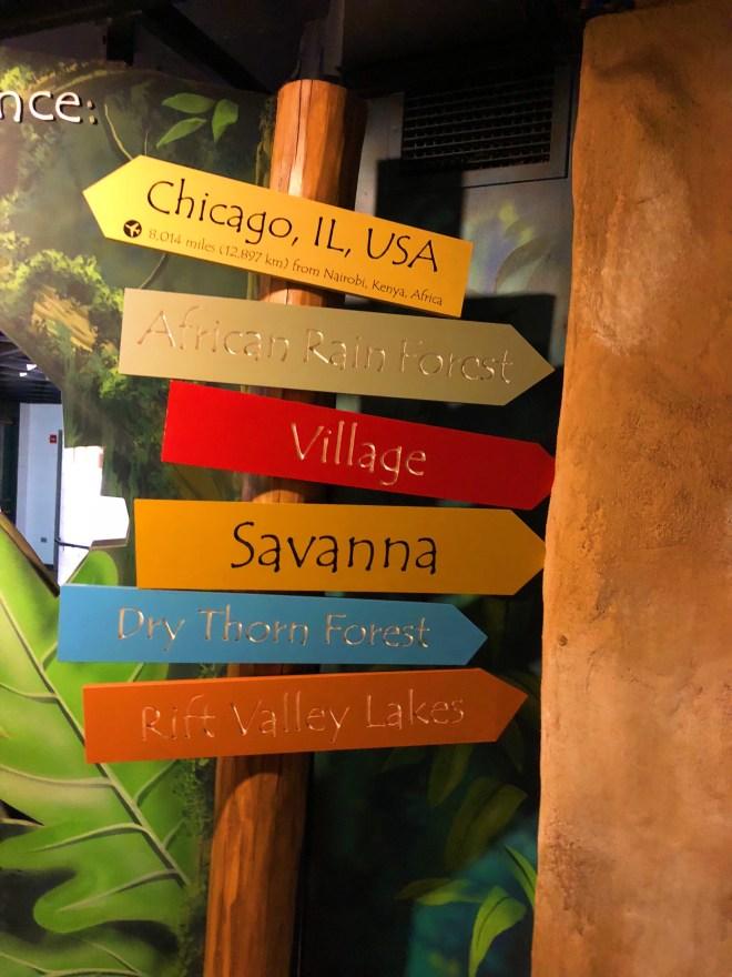 Lincoln park zoo, Chicago zoo, zoo animal, #adultnightatthezoo