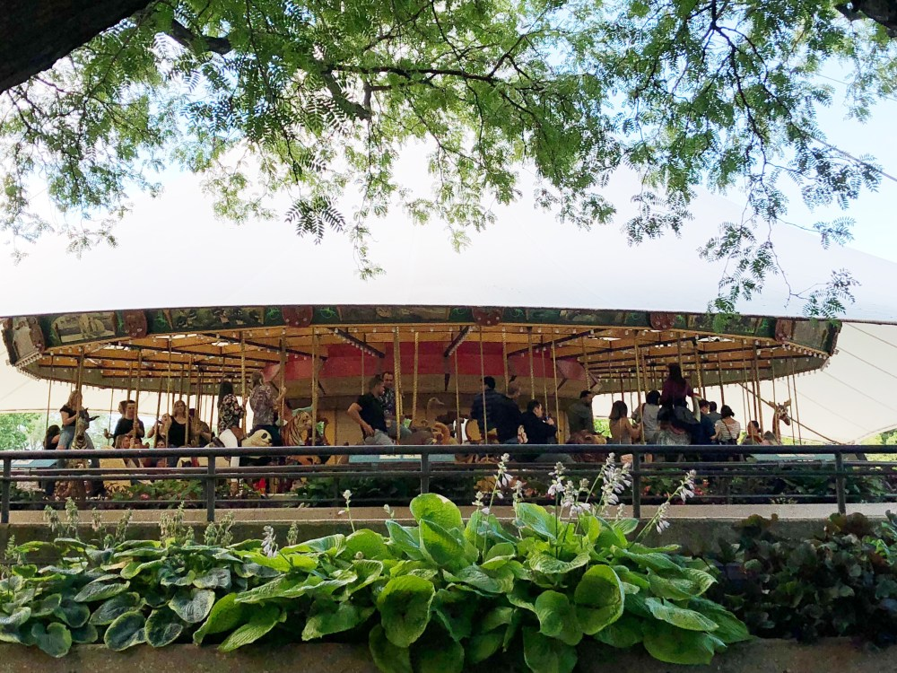 #nightatthezoo, Lincoln park zoo, Chicago zoo, zoo animal, #adultnightatthezoo, carousel, chicago blogger