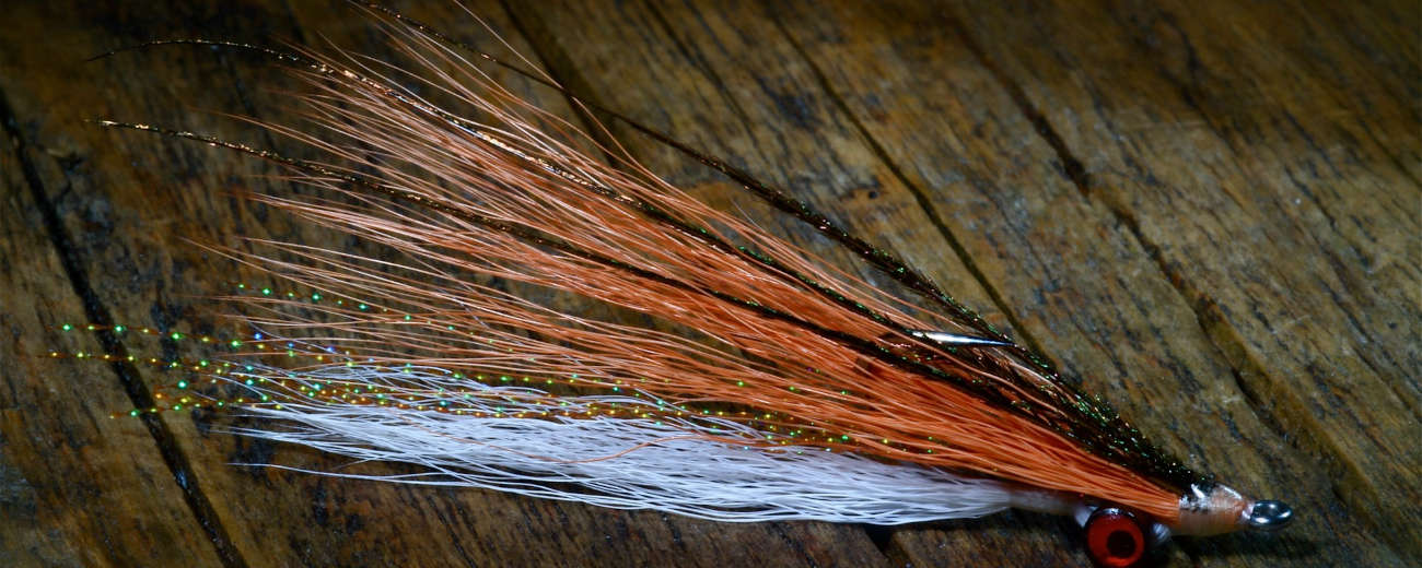 Clouser minnow tied by Barry Ord Clarke