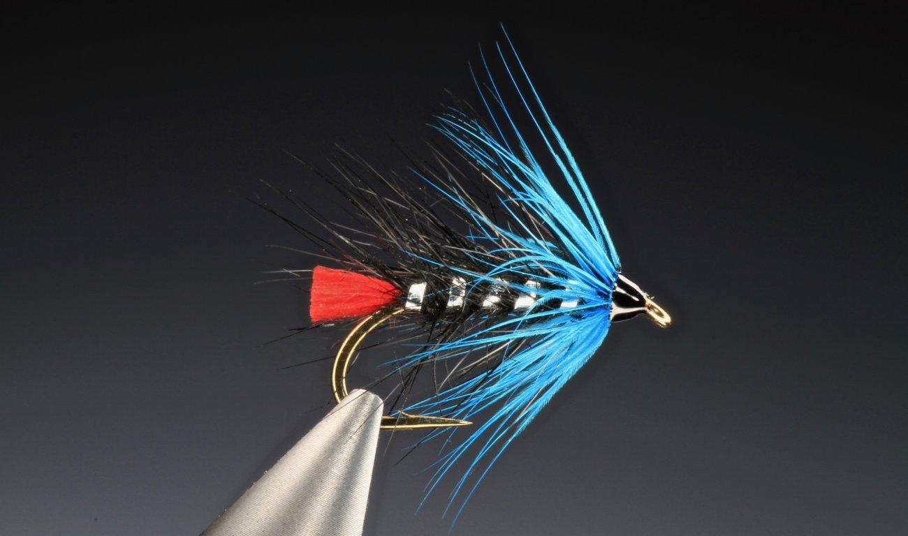 blue zulu tied by Barry Ord Clarke