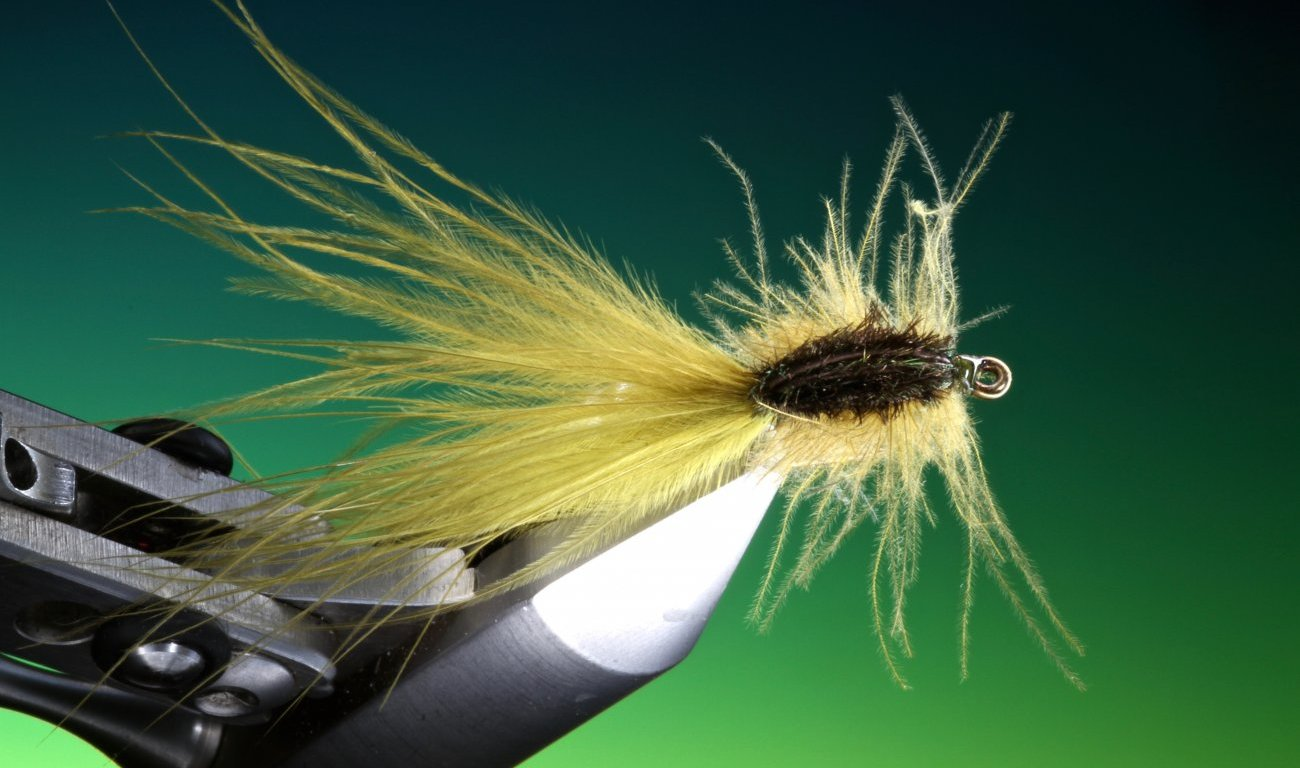 Damsel nymph stalking bug tied by Barry Ord Clarke