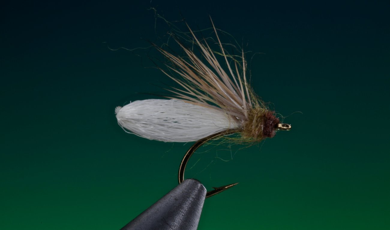 fly tying Para post diving caddis