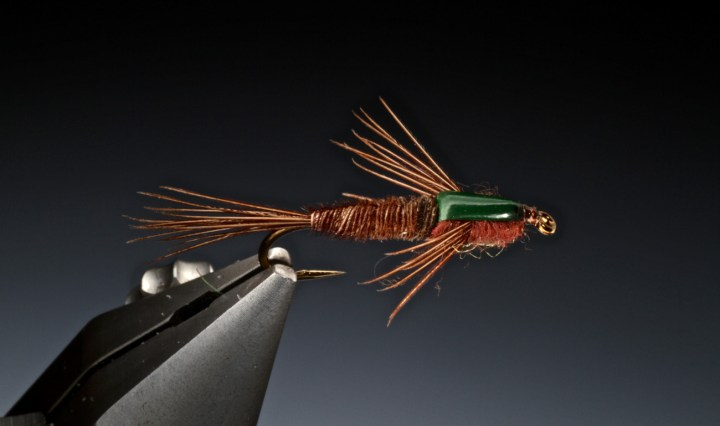 Simple stone fly nymph tied by Barry Ord Clarke