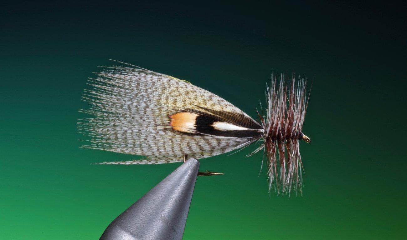 Hornberg fly tied by Barry Ord Clarke