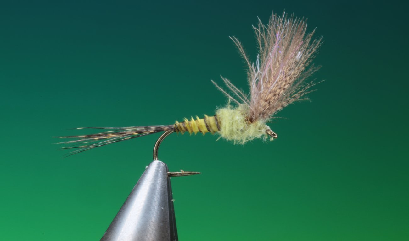 fly tying Mixed wing Comparadun