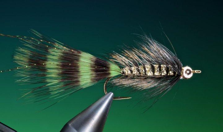 fly tying Flashy Woolly Bugger