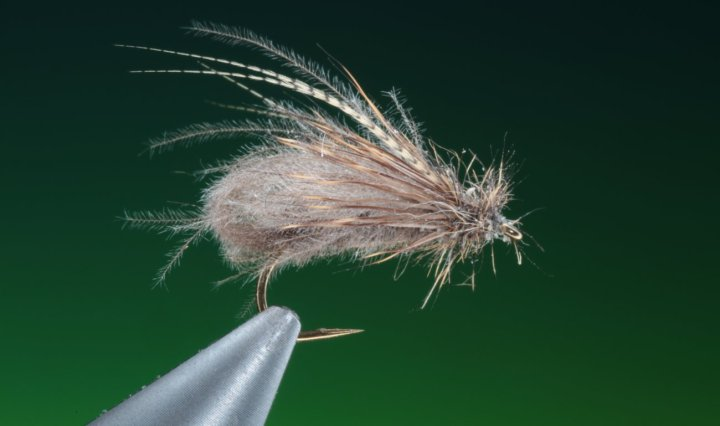 Fly tying Bubble Caddis dry fly