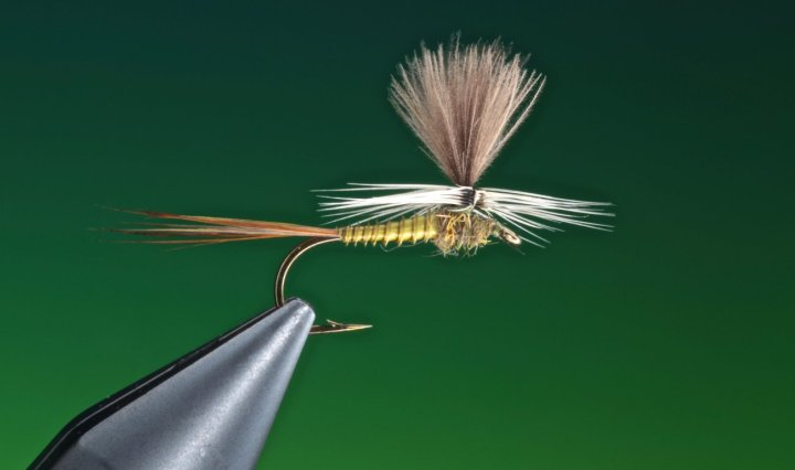 fly tying Blue winged olive parachute