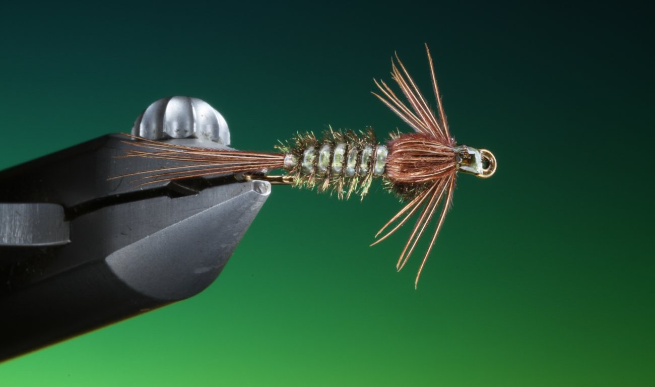 fly tying Gill Abdomen nymph
