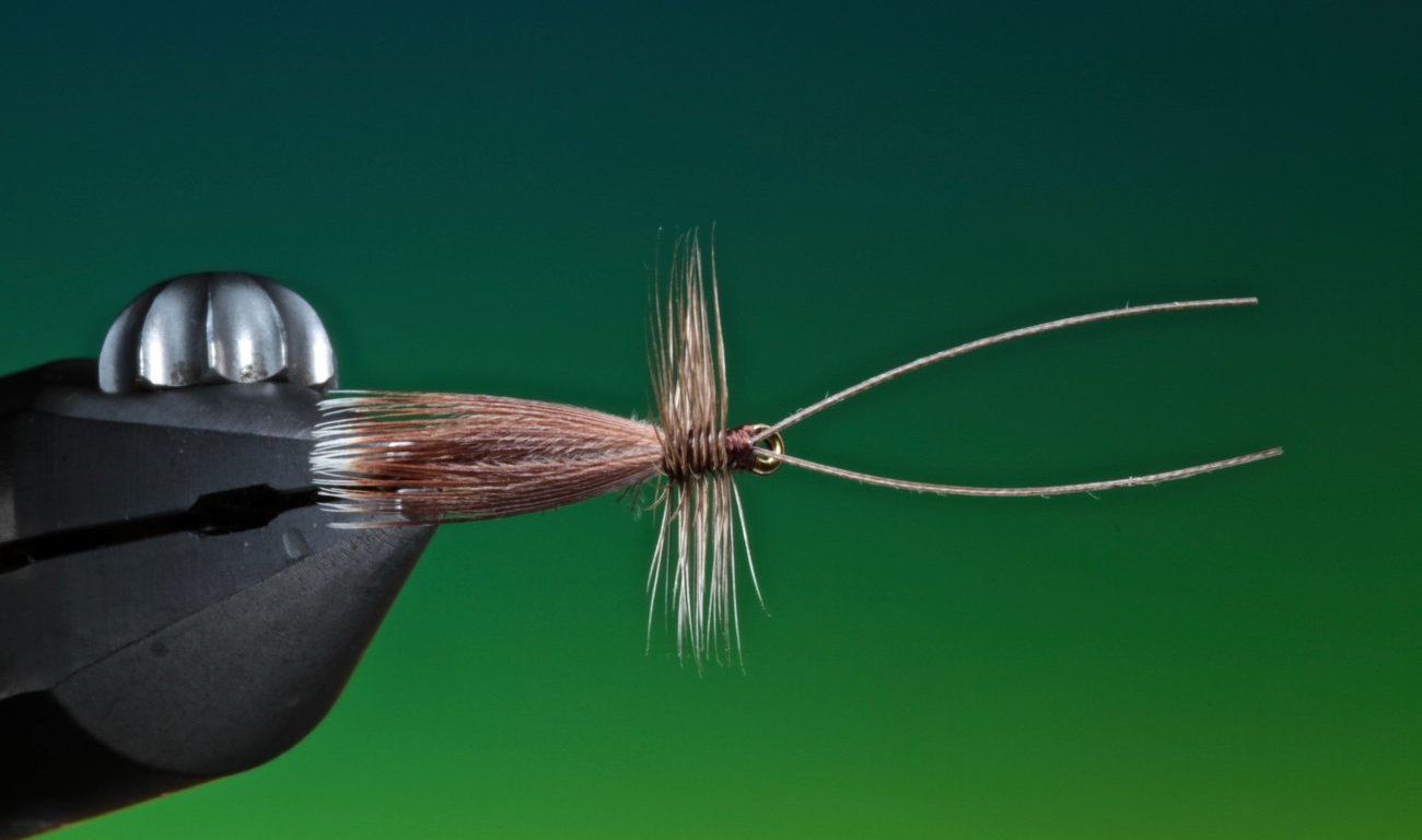 Welshman's Button fly tied by Barry Ord Clarke
