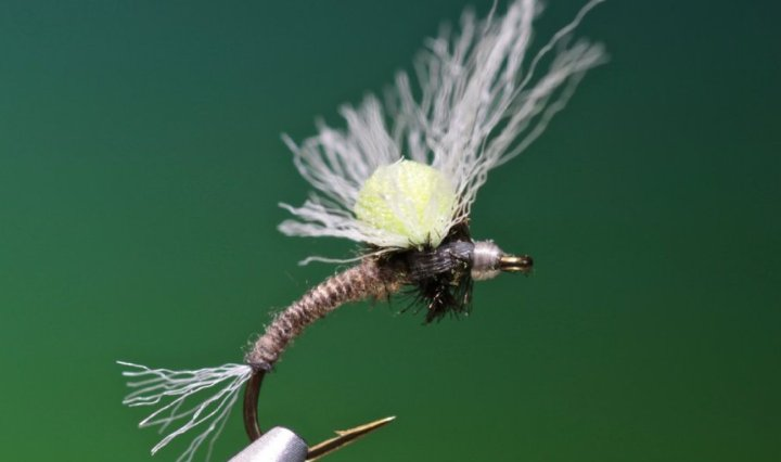 Clarkes No Hackle Emerger tied by Barry Ord Clarke