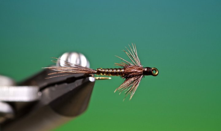 fly tying Magic Glass Pheasant tail nymph