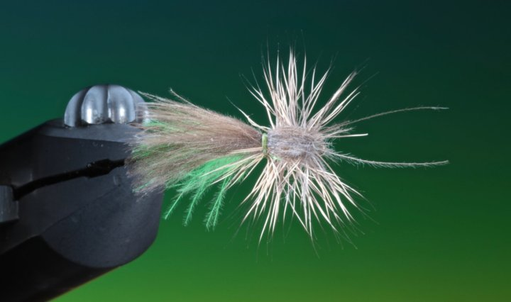 Midsummer Caddis dry fly tied by Barry Ord Clarke