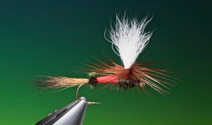 fly tying Parachute Royal Wulff