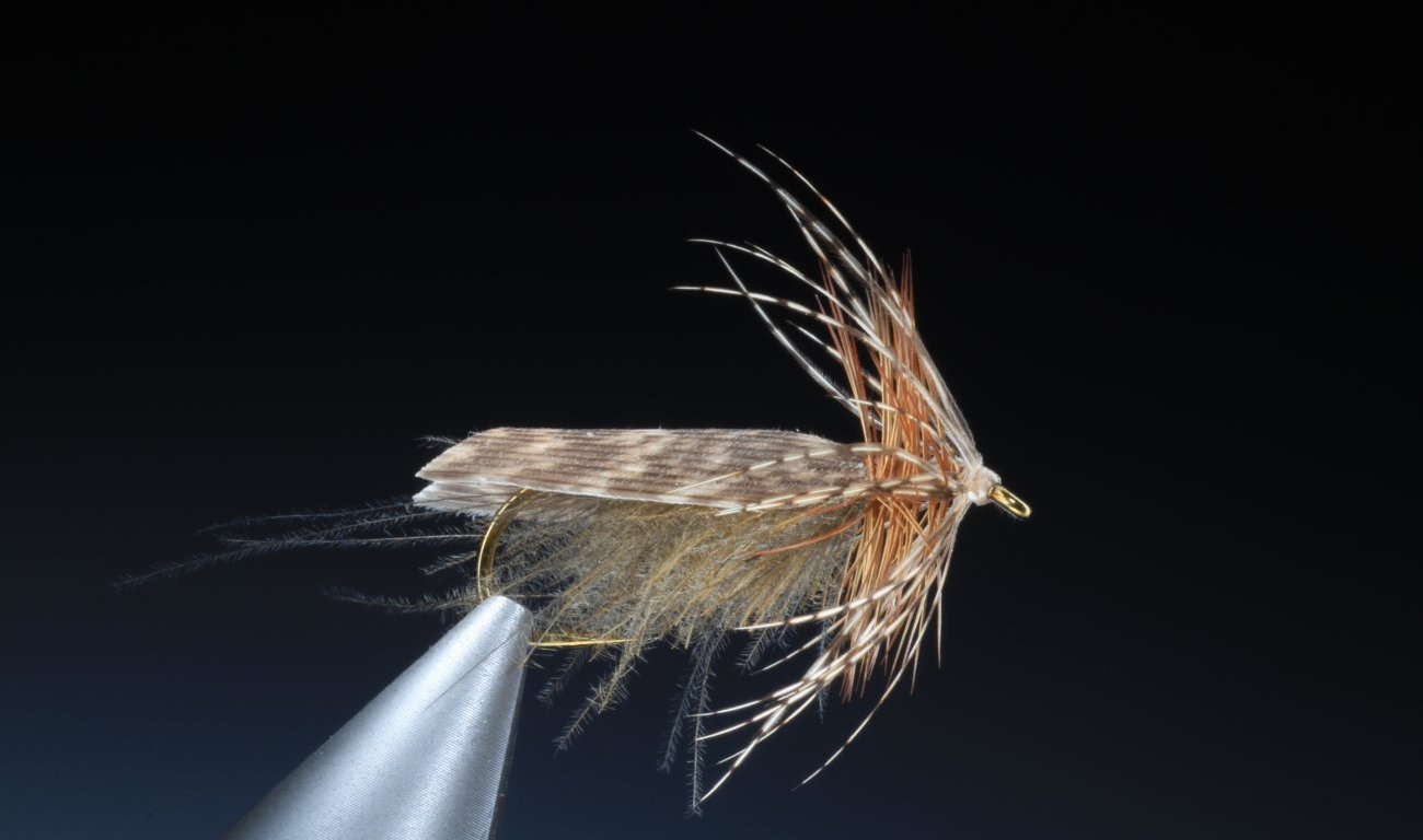 fly tying grey sedge dry fly