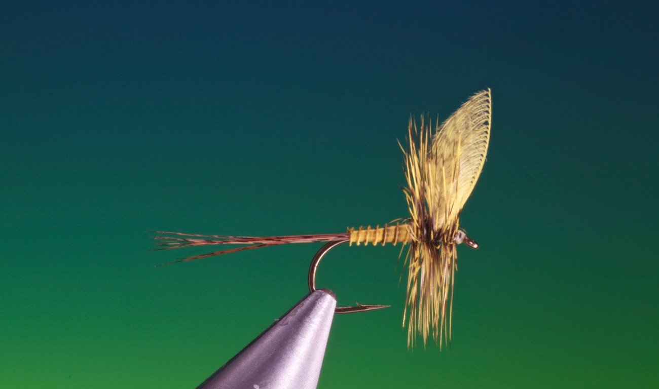 Yellow mayfly tied by Barry Ord Clarke