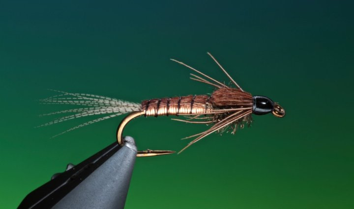 Copper pheasant tail nymph tied by BArry Ord Clarke