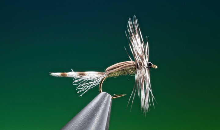 fly tying Lady Mc Connell dry fly