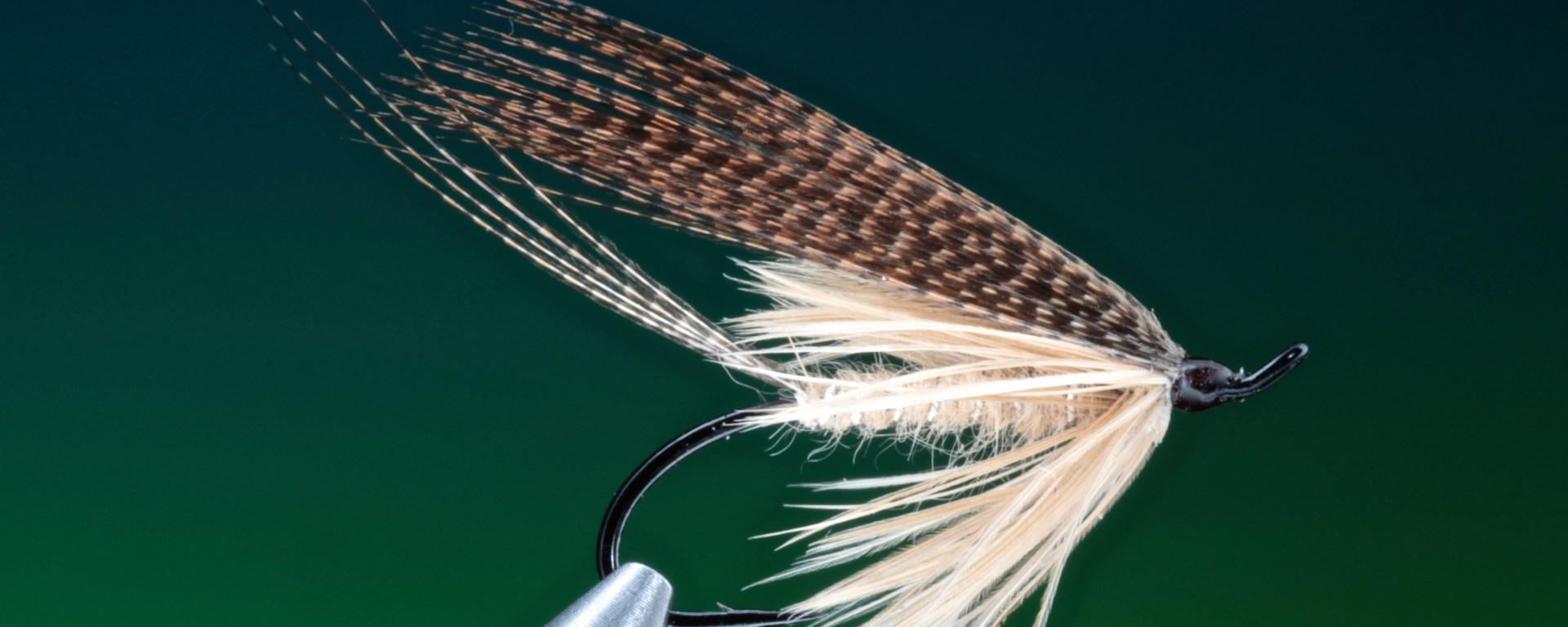 mayfly wet
