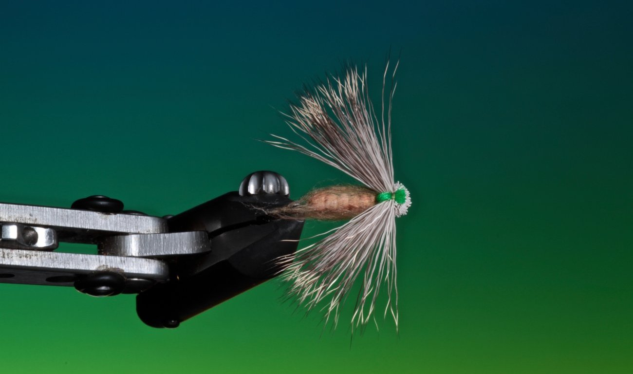 fly tying Delta wing caddis