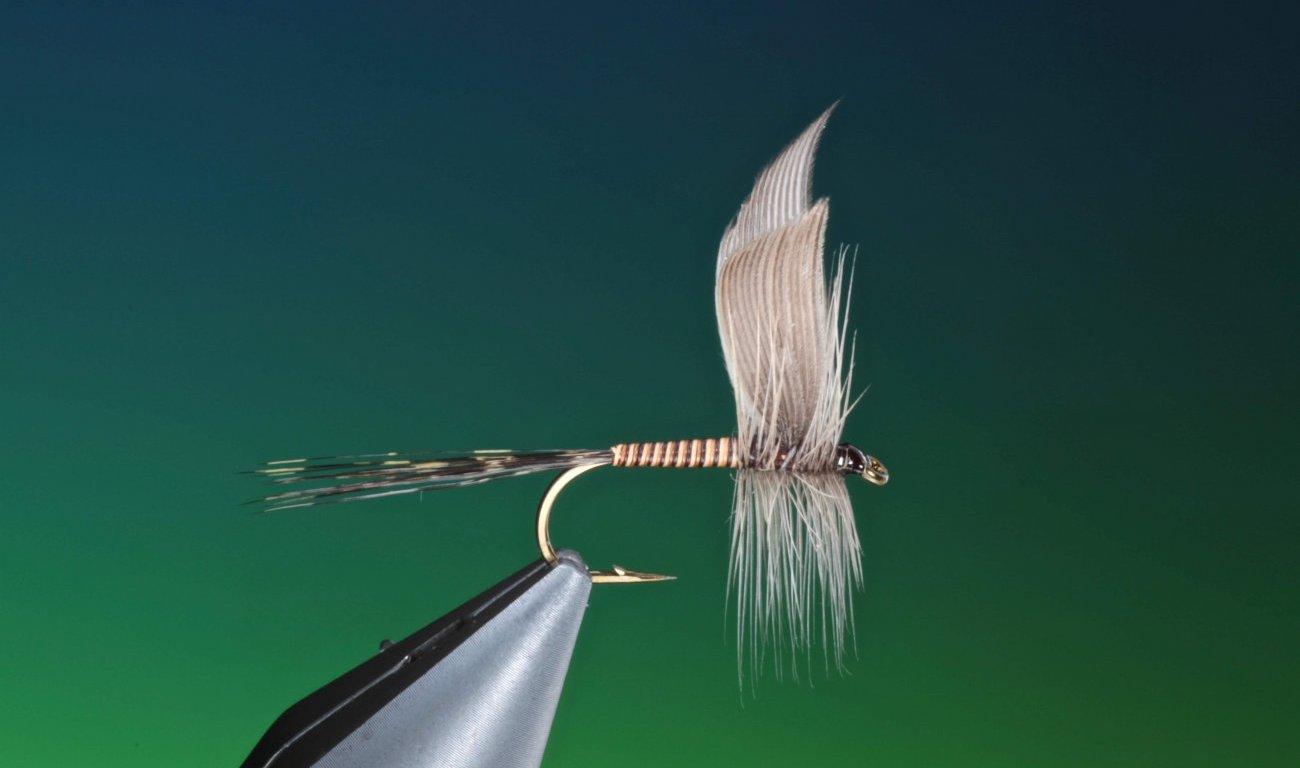 fly tying tutorial Mallard slip wings