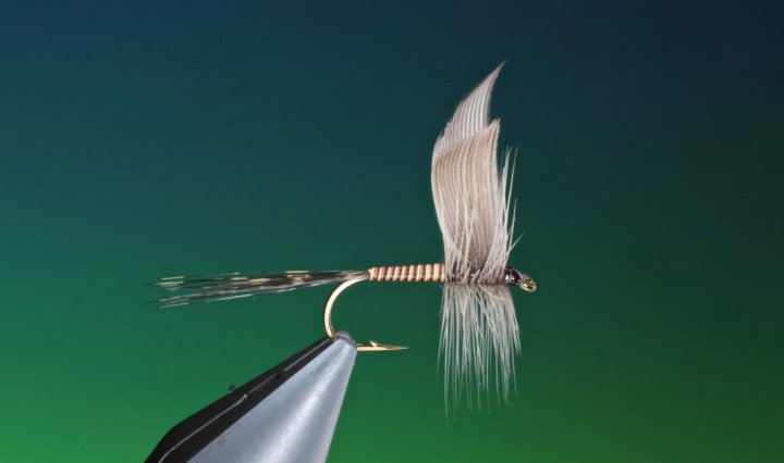 fly tying tutorial Mallard slip wings