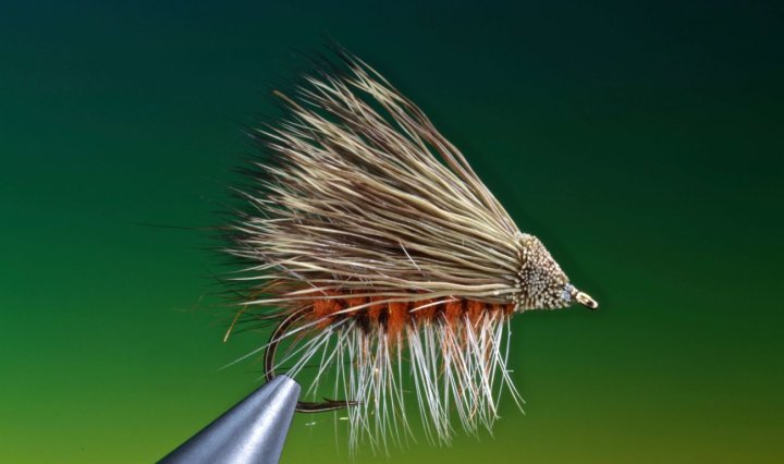 October Caddis fly tied by Barry Ord Clarke
