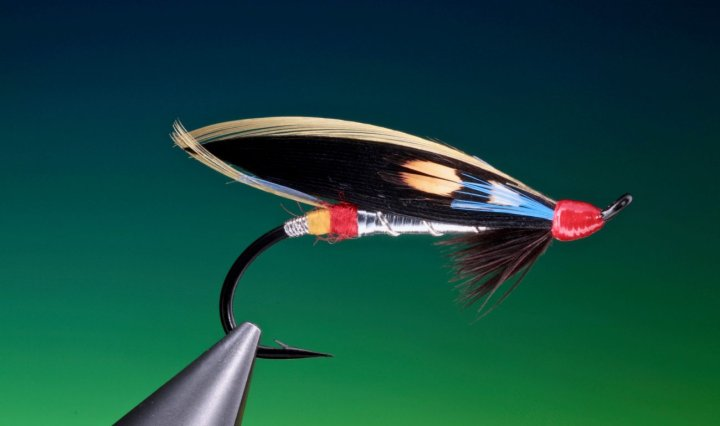 nighthawk salmon fly tied by Barry Ord Clarke