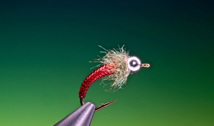 Red hot chilli pupa tied by Barry Ord Clarke