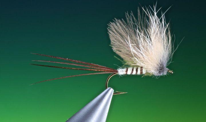 Fur hackle mayfly tied by Barry Ord Clarke