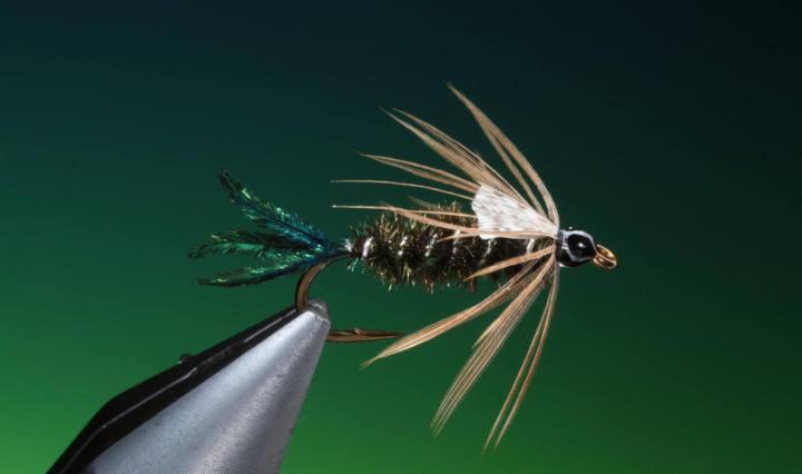 Zug Bug tied by Barry Ord Clarke