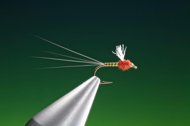 Quill RS2 fly tied by Barry Ord Clarke