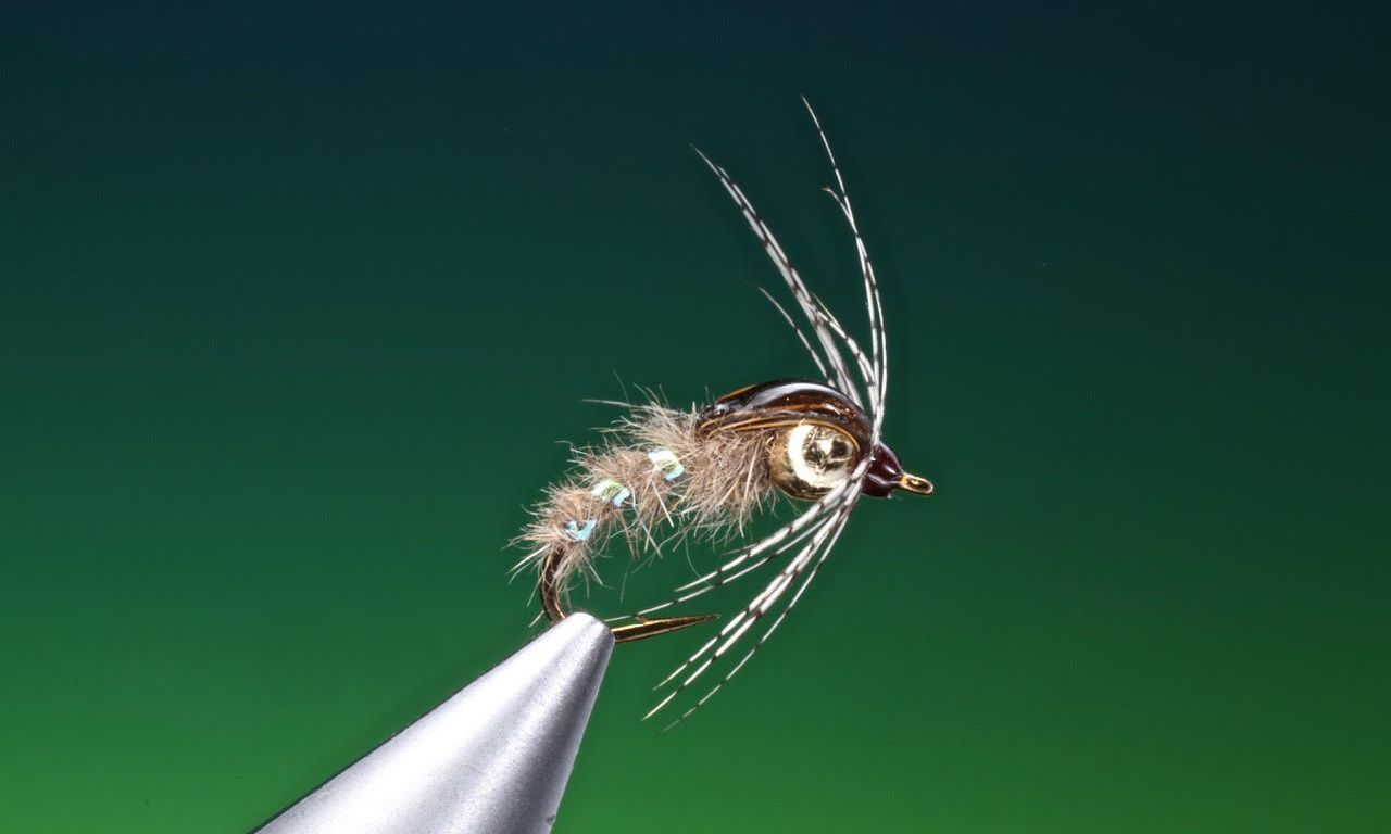 holy grail caddis tied by Barry Ord Clarke
