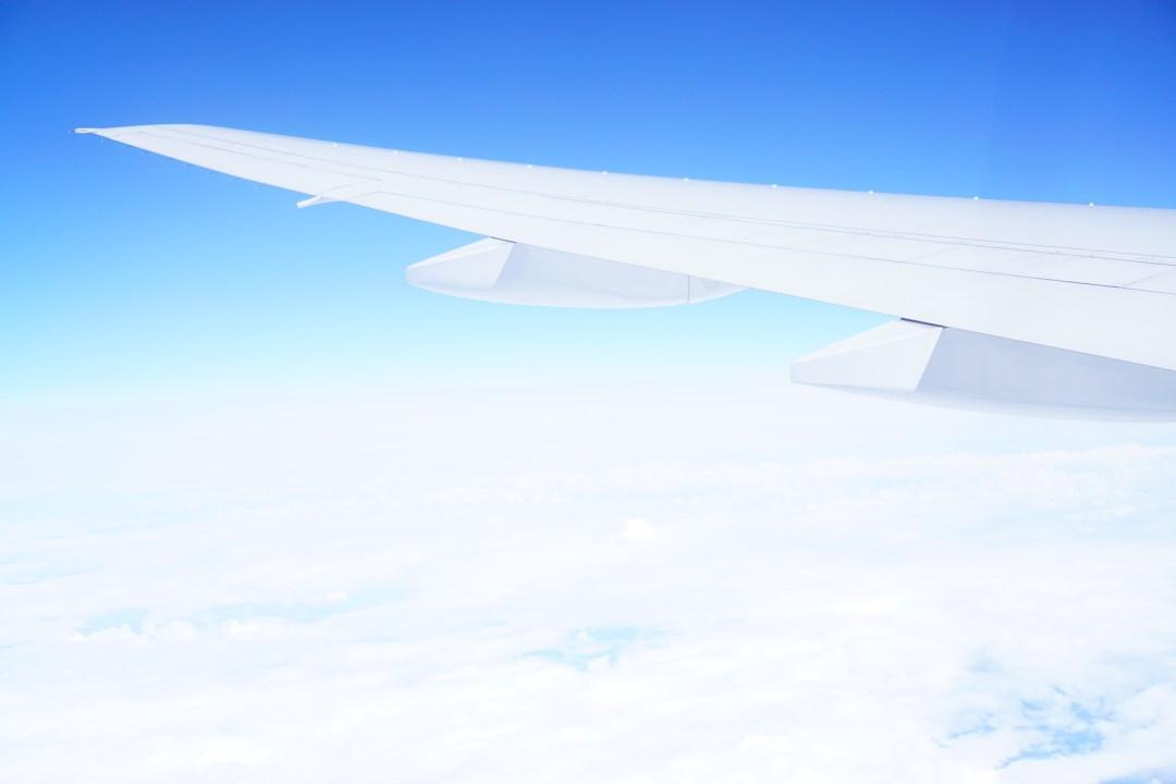 Plane Wing - TheFebruaryFox.com