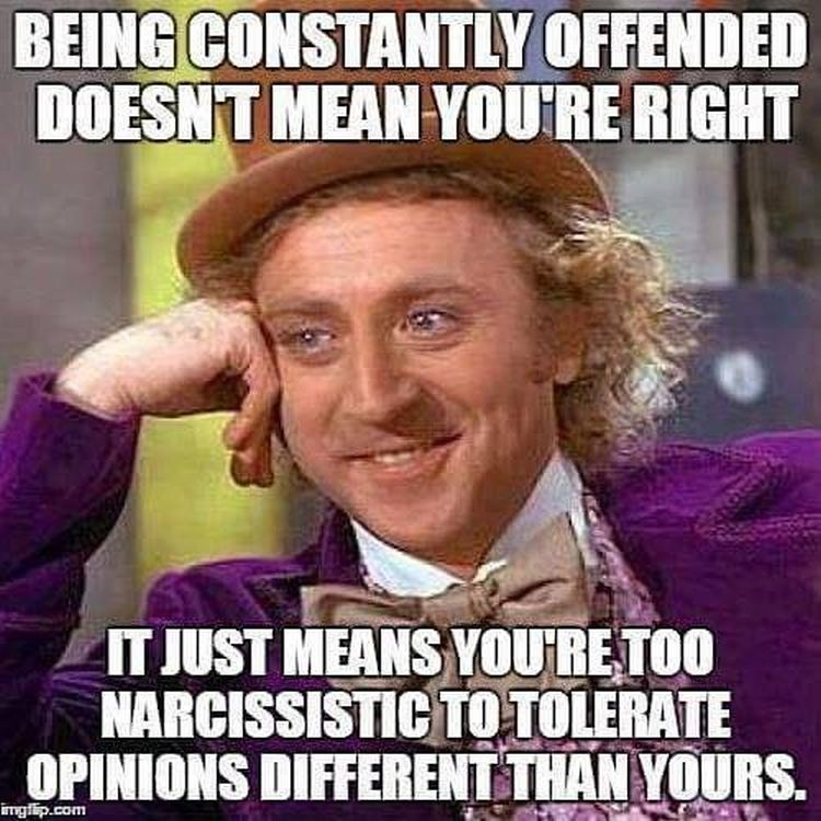 Image result for liberals are offended by everything
