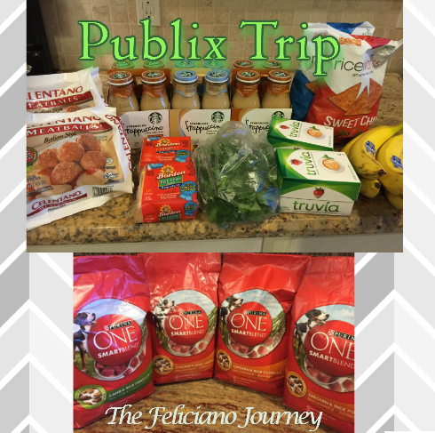The Feliciano Journey publix-112715