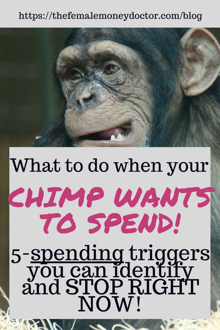 Title Picture - What To Do When Your Inner Chimp Wants To Spend