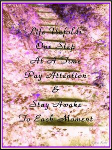 Life unfolds one step at a time. Pay attention & stay awake to each moment!
