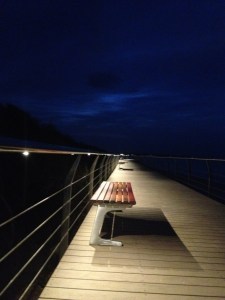 stainless steel handrail with LED lighting