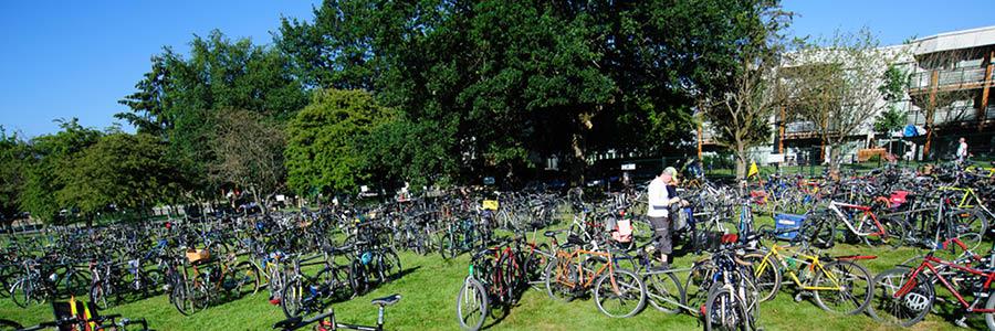 Page header 900 X 300 Bikes