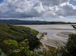 A view out over the Dwyryd Estuary from over 70 acres of woodland open to festivalgoers