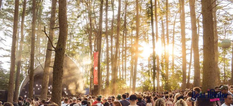 Beat-Herder Woods