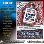 Wheres Wally Festival 2020 line-up poster