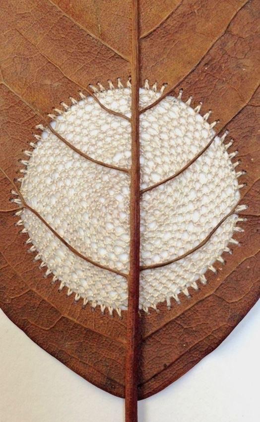 Susanna Bauer Leaf Crochet
